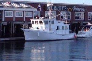 2005 Cape Islander 43 Trawler