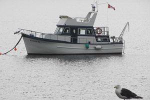 2002 Trawler Custom